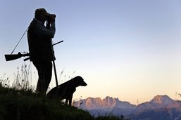 Décisions sur la chasse justifiées