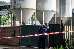 Les Pays-Bas démarrent l'abattage de milliers de visons