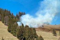 Début d'incendie de forêt à Crésuz