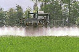 La guerre aux pesticides lancée