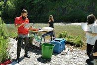 Les 48h de la biodiversité cataloguent près de 500 organismes